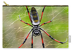 Close-up Of A Golden Silk Orb-weaver Carry-all Pouch by Panoramic Images