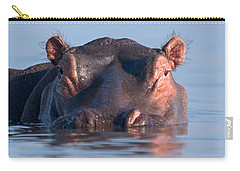 Close-up Of A Hippopotamus Submerged Carry-all Pouch by Panoramic Images