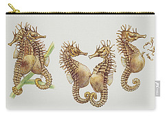 Close-up Of Sea Horses Carry-all Pouch by English School
