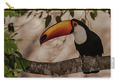 Close-up Of Tocu Toucan Ramphastos Toco Carry-all Pouch by Panoramic Images