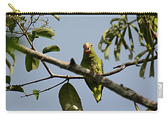 Cobalt-winged Parakeet Carry-all Pouch by Dr. Gilbert S. Grant