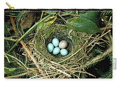 Common Cuckoo Cuculus Canorus Egg Laid Carry-all Pouch by Jean Hall