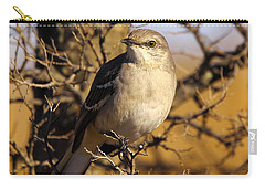 Common Mockingbird Carry-all Pouch by Robert Frederick