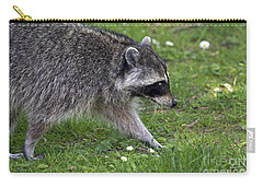 Common Raccoon Carry-all Pouch by Sharon Talson