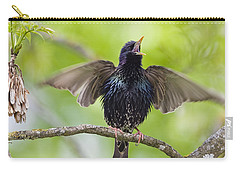 Common Starling Singing Bavaria Carry-all Pouch by Konrad Wothe