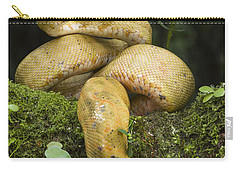Common Tree Boa -yellow Morph Carry-all Pouch by Pete Oxford