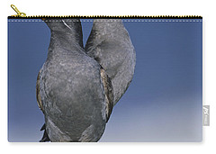 Crested Auklet Pair Carry-all Pouch by Toshiji Fukuda