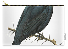 Cuckoo Shrike Carry-all Pouch by Anonymous