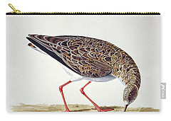 Curlew Sandpiper Carry-all Pouch by Charles Collins