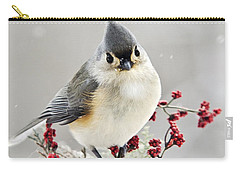 Cute Winter Bird - Tufted Titmouse Carry-all Pouch by Christina Rollo