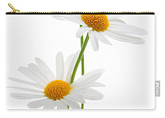 Daisies On White Background Carry-all Pouch by Elena Elisseeva