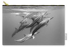 Dolphin Pod Carry-all Pouch by Sean Davey