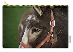 Donkey Carry-all Pouch by Shane Holsclaw