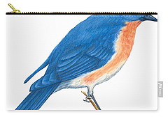 Eastern Bluebird Carry-all Pouch by Anonymous