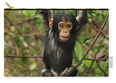 Eastern Chimpanzee Baby Hanging Carry-all Pouch by Thomas Marent