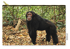 Eastern Chimpanzee Gombe Stream Np Carry-all Pouch by Thomas Marent