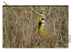 Eastern Meadowlark Carry-all Pouch by Meg Rousher