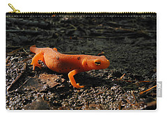 Eastern Newt Red Eft Carry-all Pouch by Christina Rollo