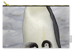 Emperor Penguin And Two Chicks Carry-all Pouch by Frederique Olivier