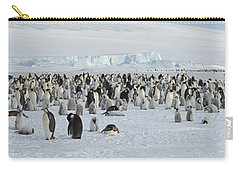 Emperor Penguins Aptenodytes Forsteri Carry-all Pouch by Panoramic Images
