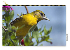 Female Baltimore Oriole In A Flower Basket Carry-all Pouch by Christina Rollo
