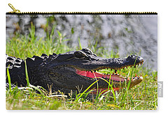 Gator Grin Carry-all Pouch by Al Powell Photography USA