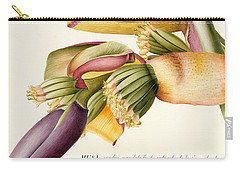 Flower Of The Banana Tree  Carry-all Pouch by Georg Dionysius Ehret