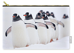 Gentoo Penguins In Line Cuverville Carry-all Pouch by Alex Huizinga