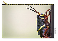 Giant Eastern Lubber Grasshopper Carry-all Pouch by Edward Fielding