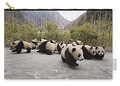 Giant Panda Cubs Wolong China Carry-all Pouch by Katherine Feng