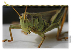 Grasshopper Carry-all Pouch by Dan Sproul