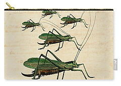 Grasshopper Parade Carry-all Pouch by Antique Images