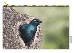 Greater Blue-eared Glossy-starling Carry-all Pouch by Andrew Schoeman