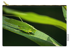 Green Katydid Carry-all Pouch by Christina Rollo