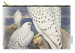 Greenland Falcon Carry-all Pouch by John Gould