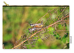Gregarious Grasshoppers Carry-all Pouch by Al Powell Photography USA