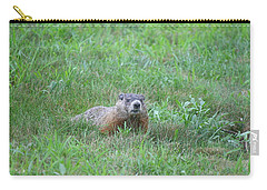 Groundhog Reconnaissance Carry-all Pouch by Neal  Eslinger