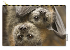 Hang In There Carry-all Pouch by Mike  Dawson