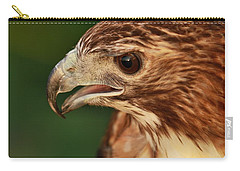 Hawk Eyes Carry-all Pouch by Dan Sproul