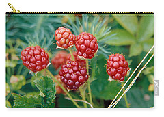 Highbush Blackberry Rubus Allegheniensis Grows Wild In Old Fields And At Roadsides Carry-all Pouch by Anonymous