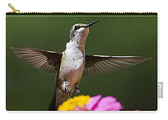 Hummingbird Carry-all Pouch by Christina Rollo