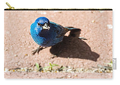 Indigo Bunting Carry-all Pouch by Jon Woodhams