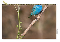 Indigo Bunting Portrait Carry-all Pouch by Bill Wakeley