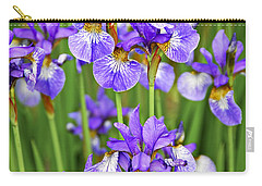Irises Carry-all Pouch by Elena Elisseeva