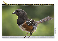 Is Cecil Around Carry-all Pouch by Jean Noren