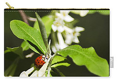 Ladybug And Flowers Carry-all Pouch by Christina Rollo