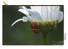 Ladybugs On Shasta Daisy Carry-all Pouch by Sharon Talson
