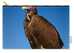 Lappetfaced Vulture Against Blue Sky Carry-all Pouch by Johan Swanepoel