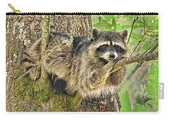 Lazy Day Raccoon Carry-all Pouch by Jennie Marie Schell