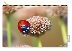 Lil Ladybug 2 Carry-all Pouch by Sharon Talson